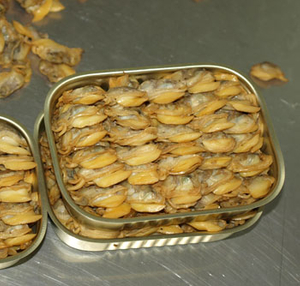 Canned Clams