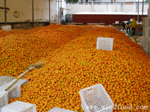 1.mandarin raw materials